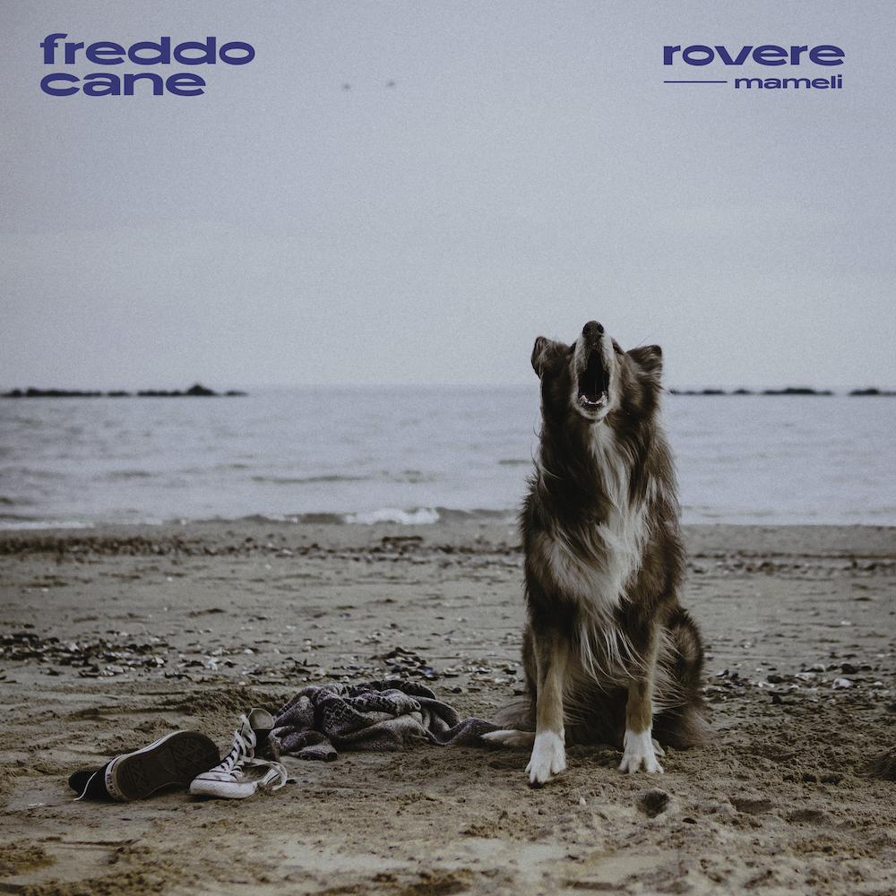 """rovere: esce il 12 febbraio il nuovo singolo""""freddo cane"""" feat. Mameli"""